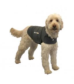 Thundershirt voor hond