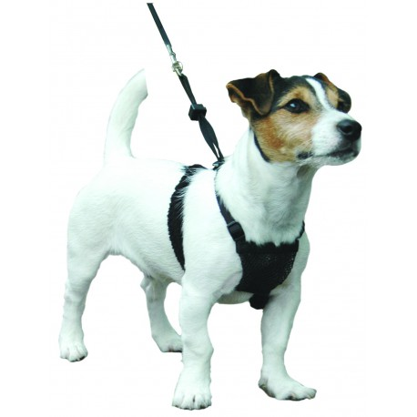 "Sporn ""non pull harness"" Small"